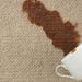 Зачем ковру нужна химчистка? Виды и способы чистки, этапы работ